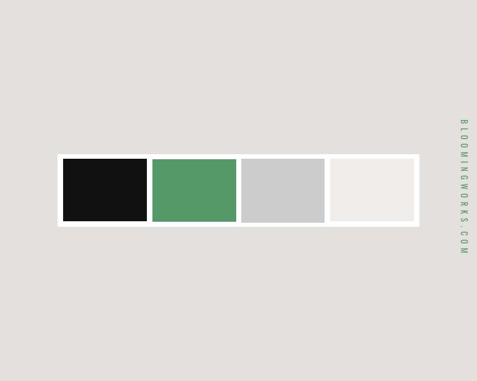 Film Website Design Color Palette